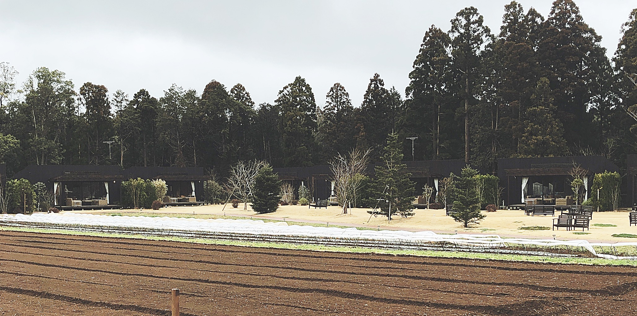 THE FARM千葉